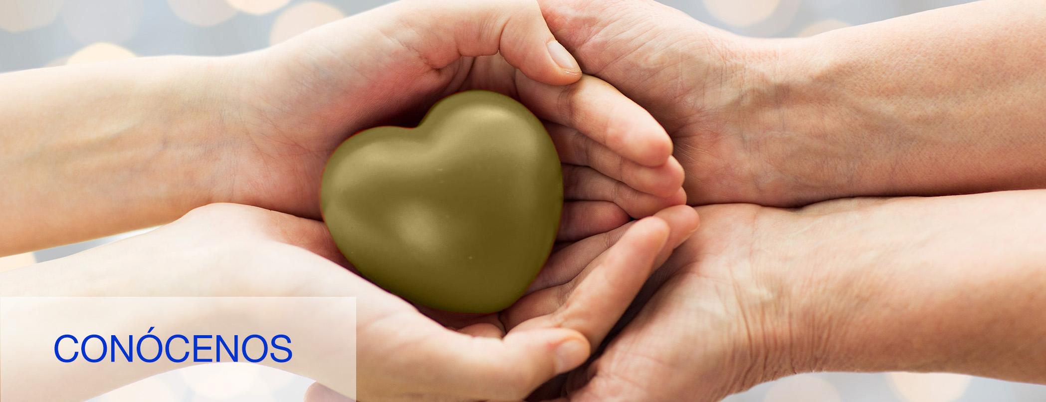manos entrelazadas con corazón dorado